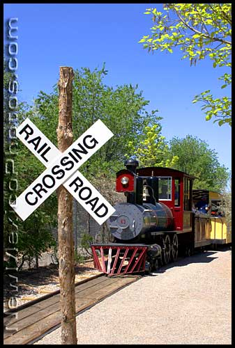 albuquerque biopark narrow gauge train