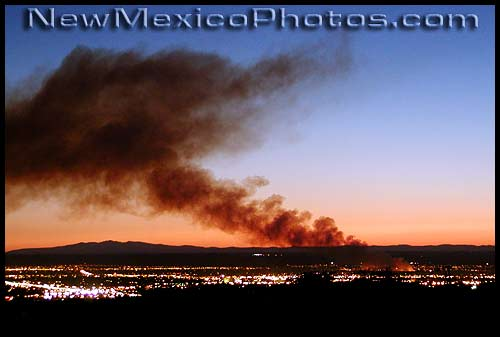 fire in the bosque, 2003
