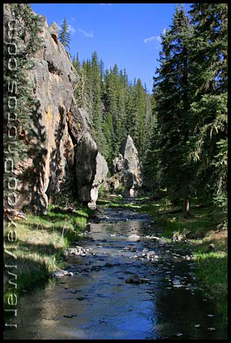 along the east fork of the jemez river