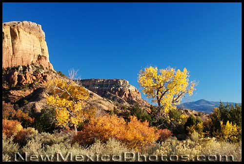 ghost ranch landscape in fall