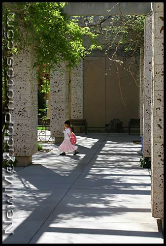 a little girl walks across the UNM campus