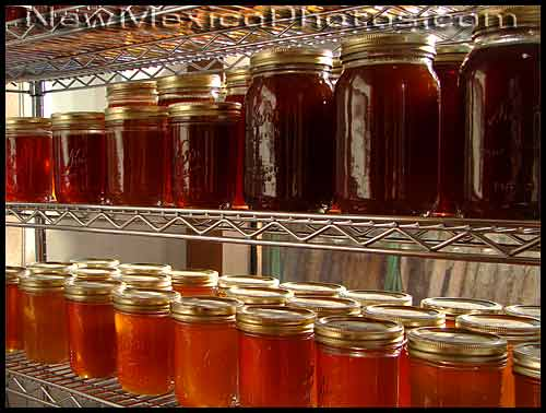 jars and jars of honey
