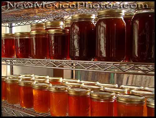 jars and jars of honey