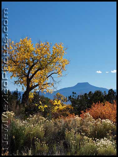 mt pedernal from ghost ranch in autumn