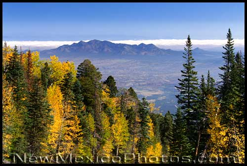 the vivid fall colors of aspens frame an expansive landscape shot from the Sandia mountains