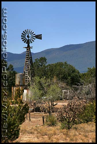 windmill and cholla in the foothills of the Manzanos