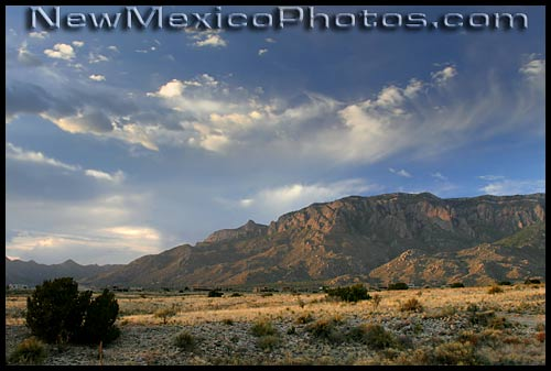 late afternoon view of the Sandia Mountains from the foothills