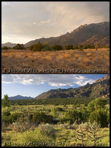 before and after the rain, at Elena Gallegos Picnic Area