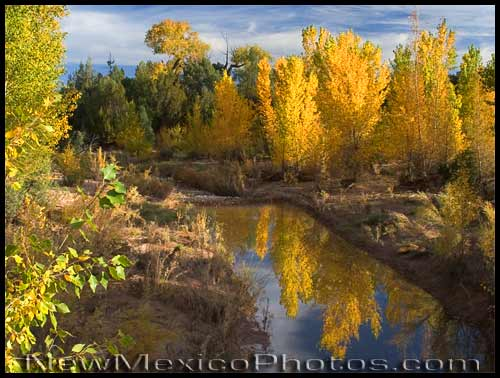 Reflections of fall trees in the water, as viewed from the suspension bridge at Ghost Ranch