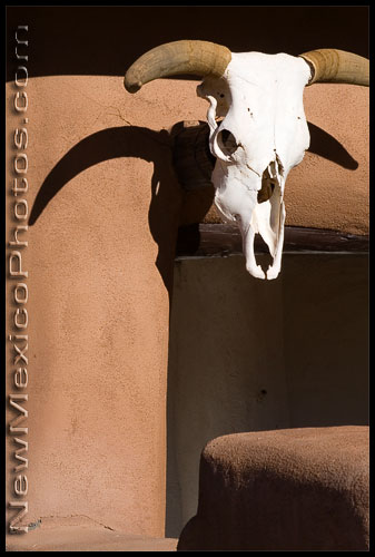 A cow skull, similar to the one on the Ghost Ranch logo, hangs on Ghost House at the ranch