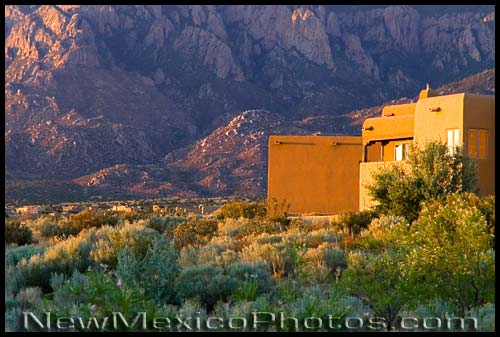 golden hour in the sandia foothills