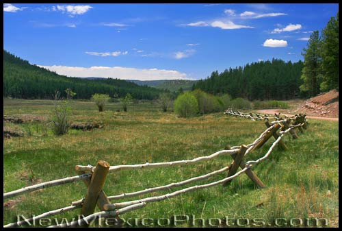 fence in the jemez, along forest road 376