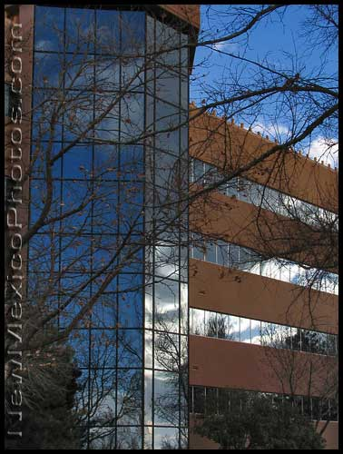 Winter trees and a sky full of clouds are reflected in the windows of an Albuquerque office building