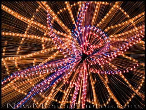 A spider lies in wait in her web at the River of Lights display