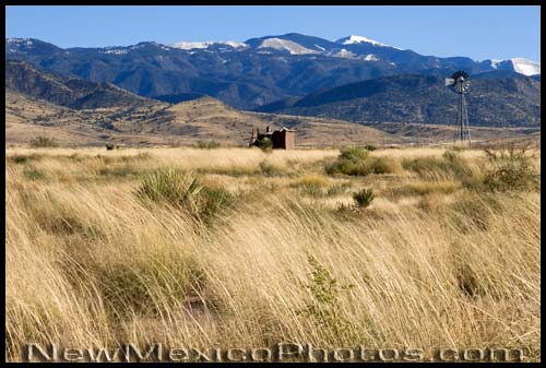 A windmill and small shack framed by blowing grass in the foreground and the snow-covered Sacramento Mountains in the background