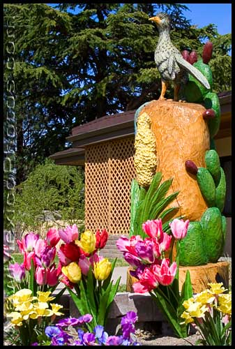 Colorful tulips decorate a carved wooden sculpture of a roadrunner and prickly pear in Albuquerque
