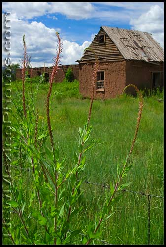 Old adobe buildings in Ocate, north of Las Vegas, New Mexico