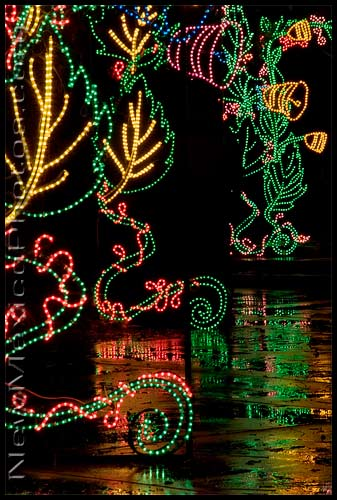 The River of Lights, at the Rio Grande Botanic Garden, immediately after a snow shower
