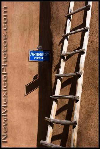 A classic New Mexican ladder at Ghost Ranch, in the courtyard between the Anthropology and Paleontology Museums
