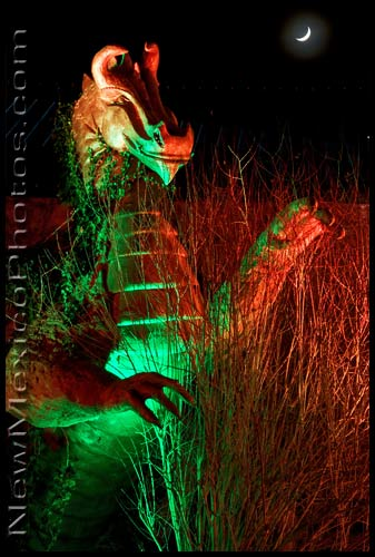 The dragon in the Rio Grande Botanic Garden, all lit up for Christmas