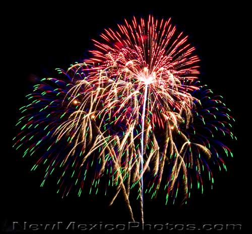 fireworks rise into the night sky