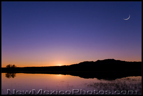 Sunset and a sliver moon over one of the ponds at Bosque del Apache